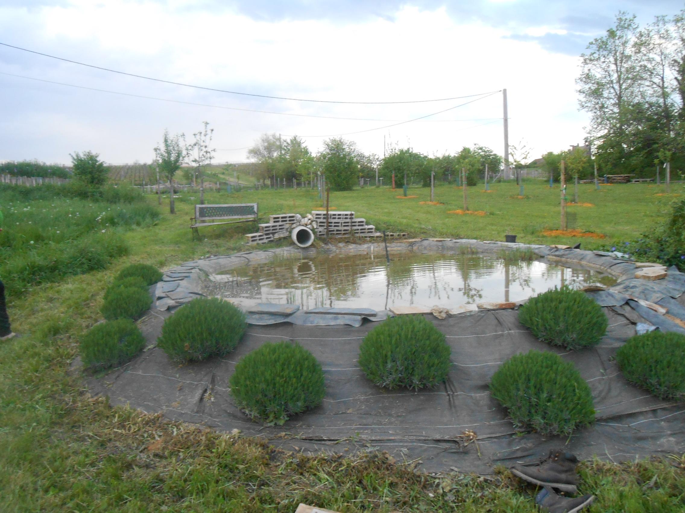 création bassin
