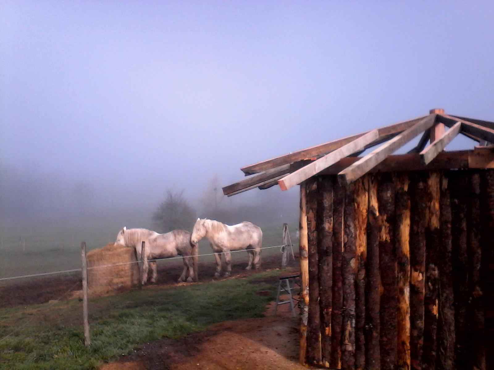 brume sur Cablanc...